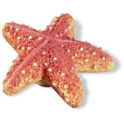 SIRO H023-67 Caribe Starfish KNOB