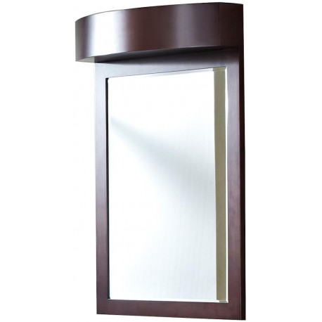 American Imaginations AI-338 24-in. W x 36-in. H Transitional Birch Wood-Veneer Wood Mirror In Coffee