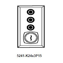 Dortronics 5241 Series Electrical Key Switch on Gang Plate