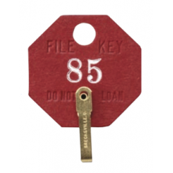 Lund 508-A Fiber Security Key Tags for File Keys, Lot 100