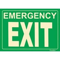 American Permalight Photoluminescent Emergency EXIT Sign