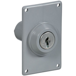 v7660-electric-key-switches-n280-834.jpg