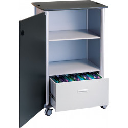 Peter Pepper 7990 Mobile File And Storage Locking storage With 1 Hinged