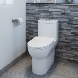 Bain Signature One Piece Ceramic Toilet