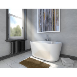 Bain Signature Bathtub Free-Standing Tub With Faucet