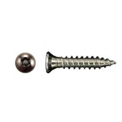 Bulldog Fasteners SM Flat Head Sheet Metal Screws (Torx Security)