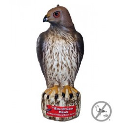 Bird B Gone Red Tail Hawk Decoy
