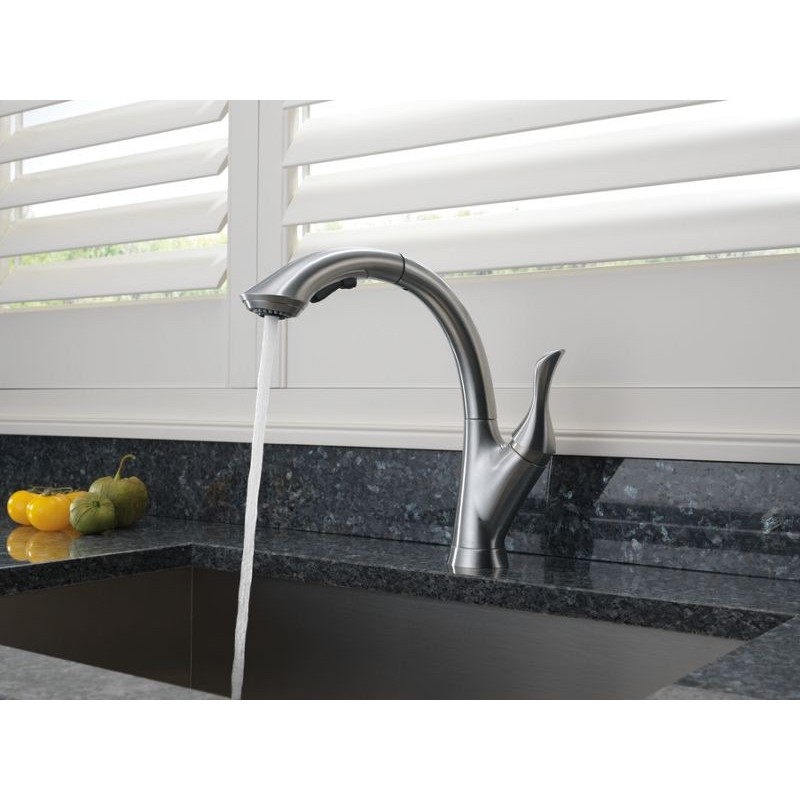 Delta 4153 Dst Single Handle Water Efficient Pull Out