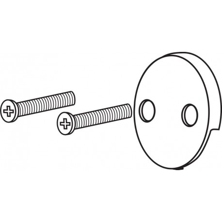 Delta RP31556 Overflow Plate and Screws Collections